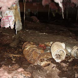 A moldy crawl space environment in Nucla